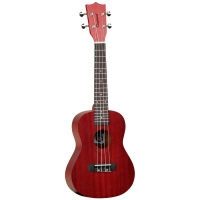 Tanglewood TWT 3 TR