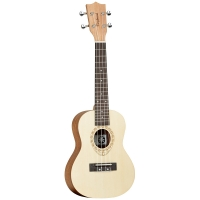 Tanglewood TWT 4
