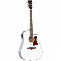 Tanglewood TW5 E WH Winterleaf  semi-acoustic guitar
