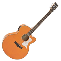 Tanglewood Evolution Viscount TSJ V3