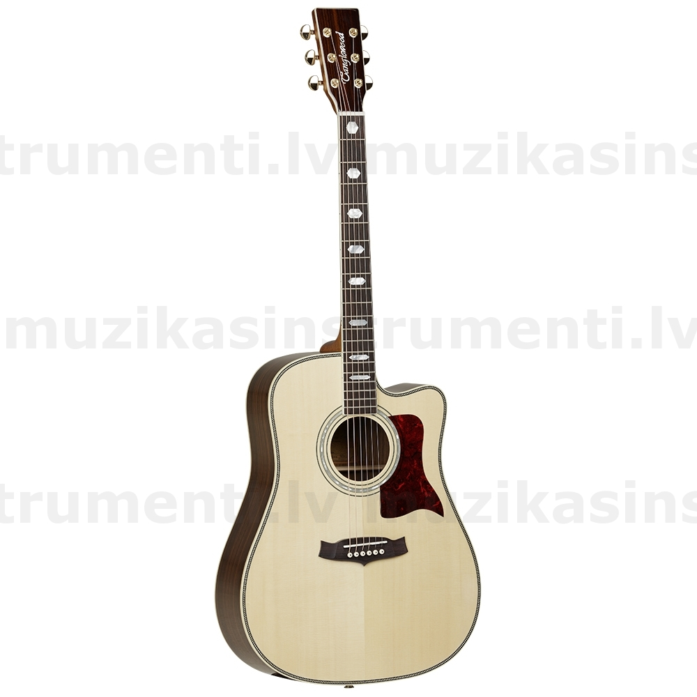 Tanglewood TW1000 CE  semi-acoustic guitar