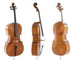 GEWA CONCERT CELLO MEISTER RUBNER Amber coloured