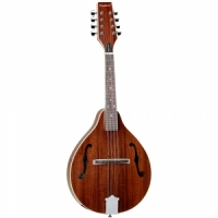 Tanglewood TWM T MH STE mandolin