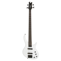 Epiphone Toby Standard - IV Bass Alpine White