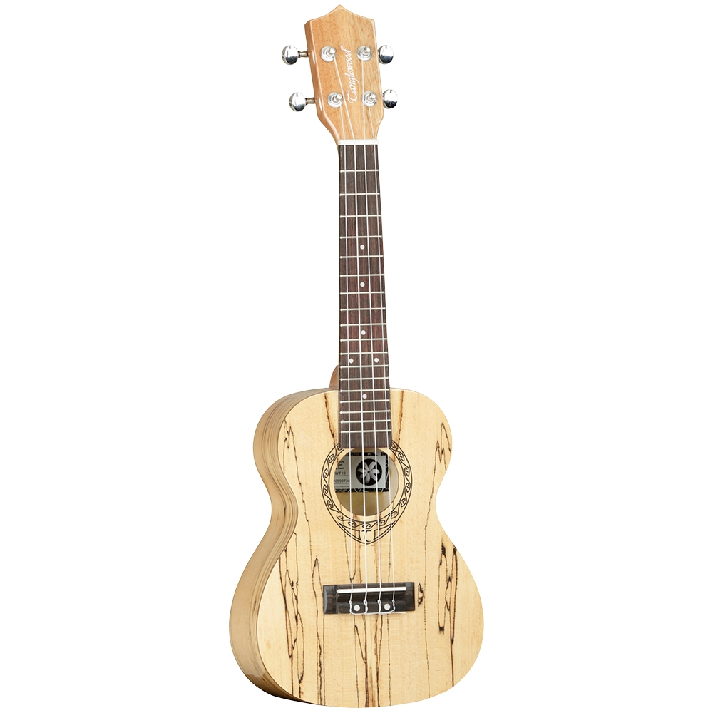 Tanglewood TWT 10