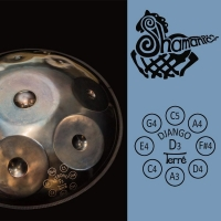 Handpan Shamanic D minor
