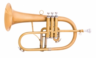 Flugel horn MTP Bb F-835X Custom